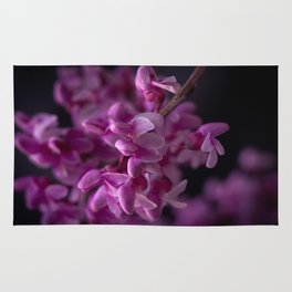 Red Bud Blossoms  Rug