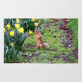 Flower-sniffing squirrel 2 Rug