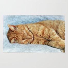 Sleepy Kitty Rug