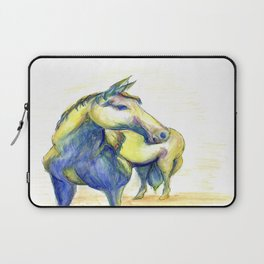 Colors of the Wind- Filly Laptop Sleeve