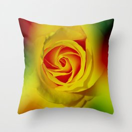 Abstract in Perfection - Rose Throw Pillow