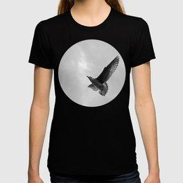A Seagull T-shirt