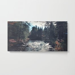 forest by the river Metal Print
