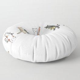 Reed Meowtet Floor Pillow