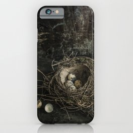 Forgotten nest with eggs iPhone Case