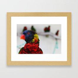 Rocker Bird Framed Art Print