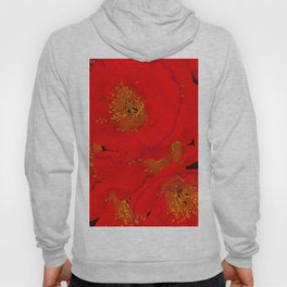 Abstract poppies 2 Hoody