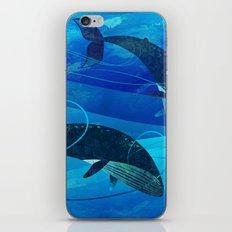 Tropical waters iPhone & iPod Skin