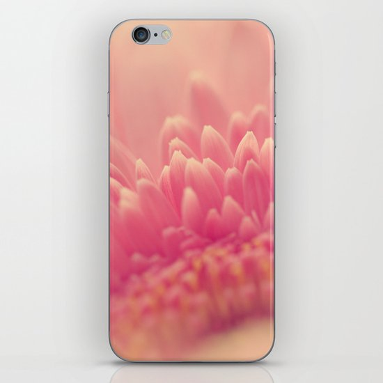 Pink Gerbera Daisy iPhone & iPod Skin