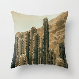 Cactus Dry Plant Throw Pillow