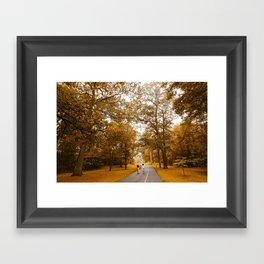 Nature Walk Framed Art Print