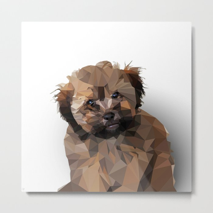 Cocoa, the puppy Metal Print
