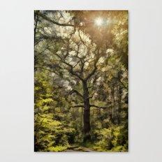 Nature Reserve 2 Canvas Print
