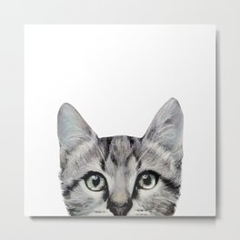 Cat, American Short hair, illustration original painting print Metal Print