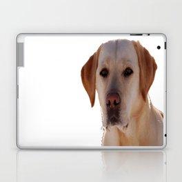 Portrait of A Golden Labrador Dog Laptop & iPad Skin