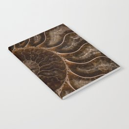 Brown Ammonite Notebook