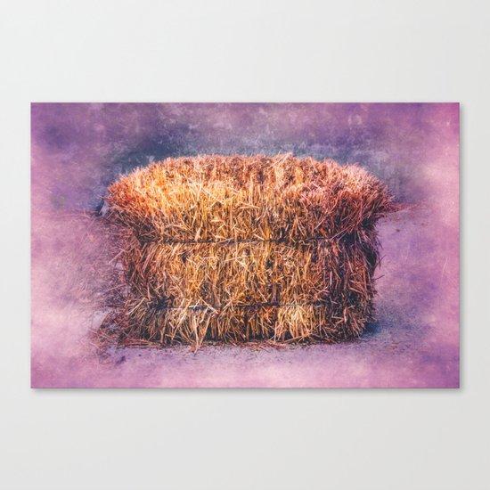 A TWIST ON HAY Canvas Print