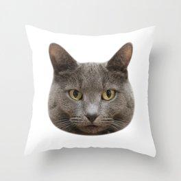 Mango, the cat Throw Pillow