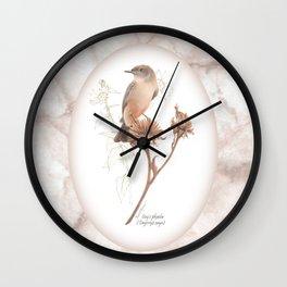 Say's phoebe (Sayornis saya) Wall Clock