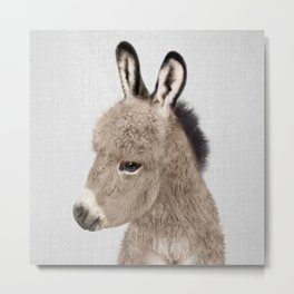 Donkey - Colorful Metal Print
