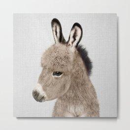 Donkey - Colorful Metal Print