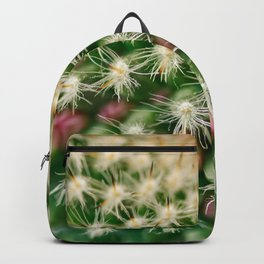 Cactus close-up shot, natural abstract background Backpack