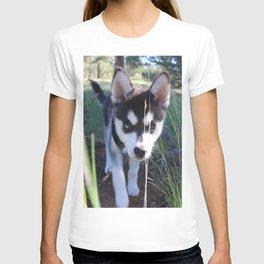 Koa On The Hunt T-shirt