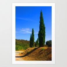 Provence Flames Art Print