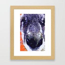 """Kaptain Kangaroo"" Kangaroo Pop Art Photography! Framed Art Print"