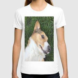 closeup corgi T-shirt