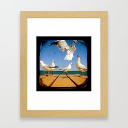 Seagulls - Number 2 from set of 4 Framed Art Print