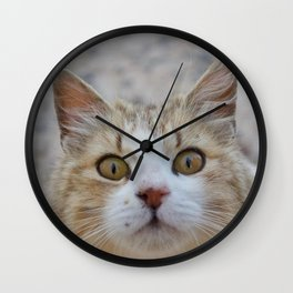 Cat by Abeer Shaheen Wall Clock