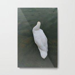 Wonder on Water (2) Metal Print