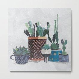 Cactus and succulents garden Metal Print