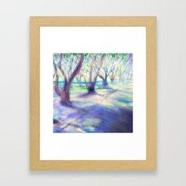 Olive grove at Filoli Framed Art Print