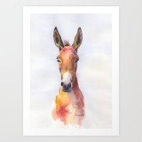 donkey, mule, jack original watercolor painting  Art Print