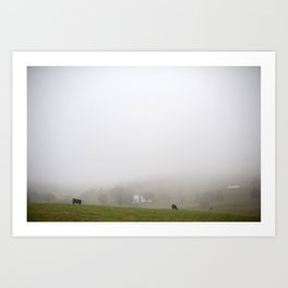 Cows in the misty hills of Virginia Art Print
