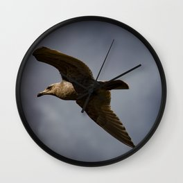 Storm Chaser - Bird flying in Sky Wall Clock