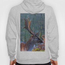 Stag Leader of the Herd 3 Hoody
