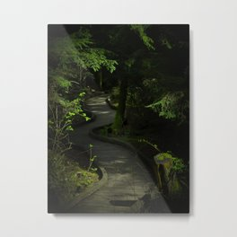 Path of Shadows Metal Print