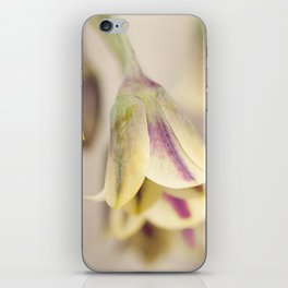 Colorful bluebells iPhone Skin