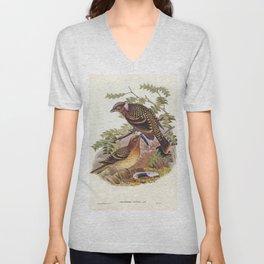 Guttated Bower-bird (Chlamydera guttata) illustrated by Elizabeth Gould (1804-1841) for John Goulds Unisex V-Neck