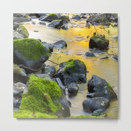 Grizzly Creek In The Fall Metal Print