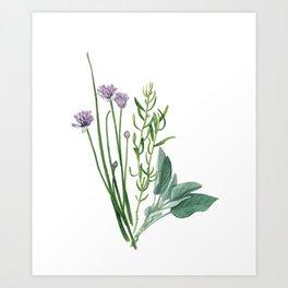 Fresh Herbs Art Print