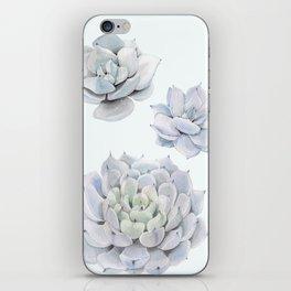 Blue Succulents iPhone Skin