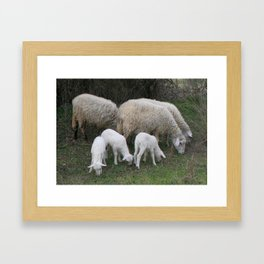 The Really Ewesful Company Framed Art Print