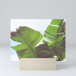 Cabana Life, No. 1 Mini Art Print