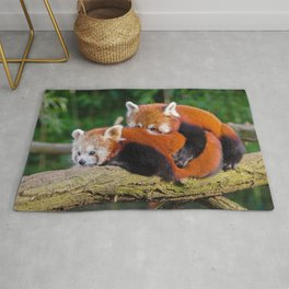 Two Super Cute Little Red Panda Bears Cuddling On Tree Branch Close Up Ultra HD Rug