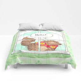 A window for Tommy Comforters