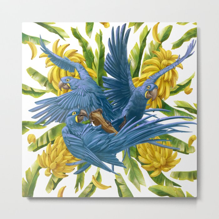 Hyacinth macaws and bananas Stravaganza. Metal Print